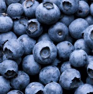 bbblueberries