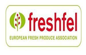 freshfellogo