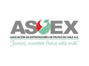 logo-ASOEX