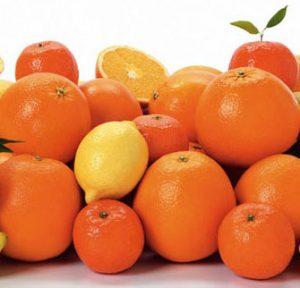 citricosportada