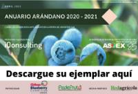 Banner Anuario Arándano 2020-2021