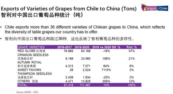Uvas chilenas mantienen liderazgo en el mercado chino con más de 36 variedades