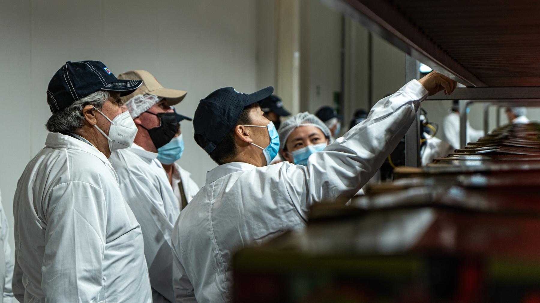 Industria de cerezas chilenas da inicio a la temporada 2021-2022